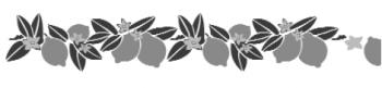 Storch Schablone (dreischlägig) 25 32 05 Floral