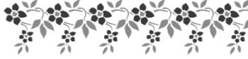 Storch Schablone (zweischlägig) 25 22 21 Floral